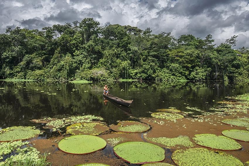 Exposição Universo Amazônico está cartaz até 1º de Abril no SESI Ourinhos