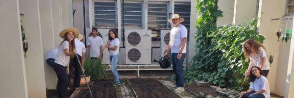 Projeto horta na escola envolve alunos em aulas ao ar livre