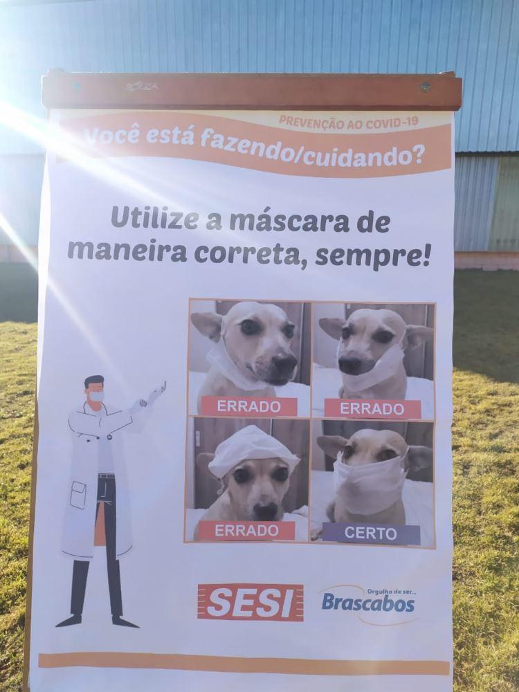 SGE EM TEMPOS DE COVID