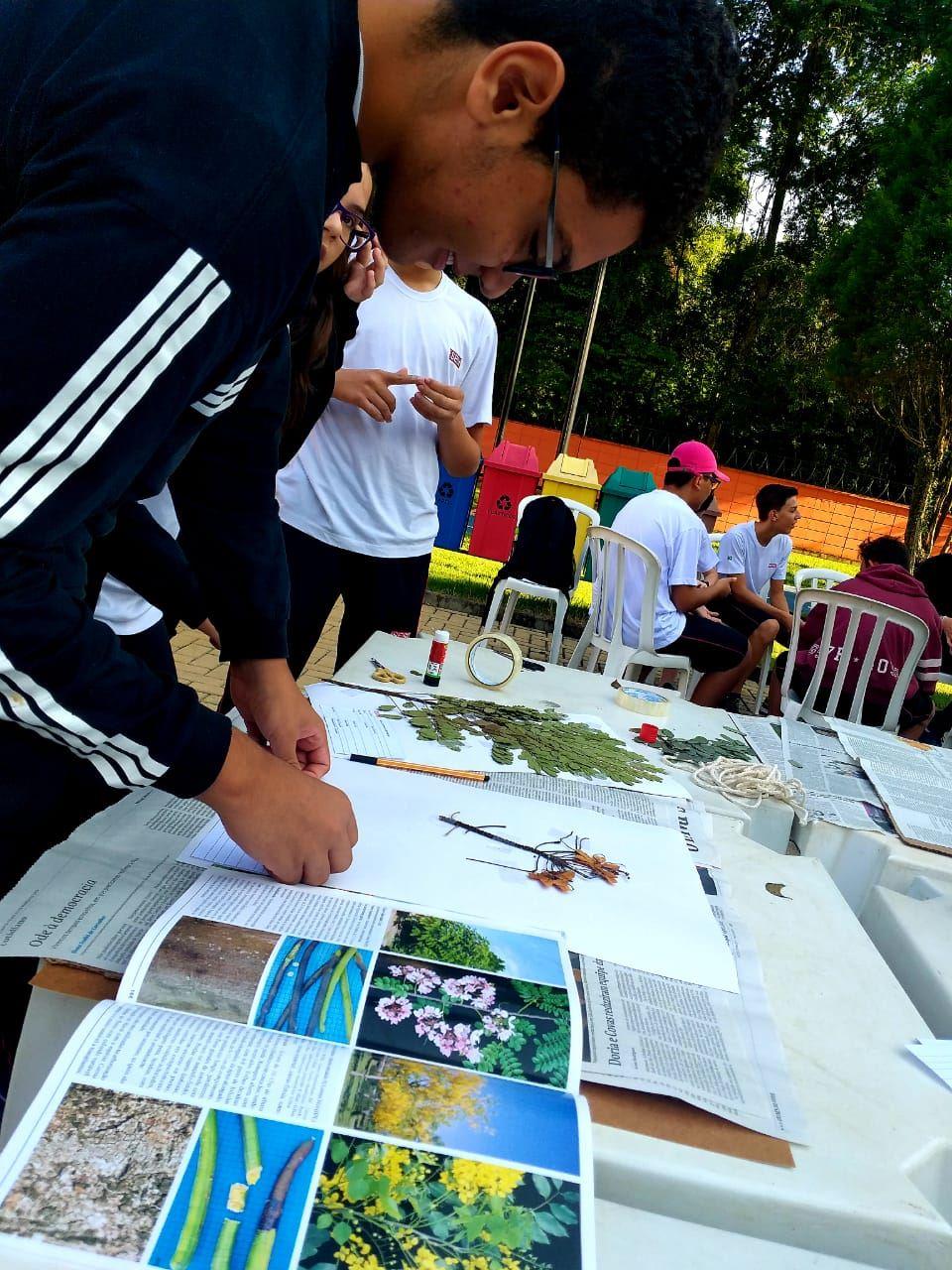 Alunos do SESI de Santa Bárbara catalogam espécies de árvores